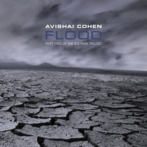 Avishai Cohen : Flood